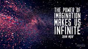 john muir dog quote the power of imagination makes us infinite inspirational quote