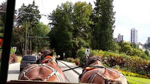 Stanley Park Stanleypark Liv Twitter by Stanley Park Horse Drawn Tour Review Youtube