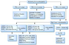 pathophysiology and treatment of pulmonary hypertension in sickle