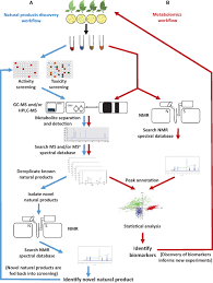 frontiers open access metabolomics databases for natural product