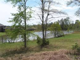 Mobile County Property Tax Records Legacy Ln Mobile Al 36608 Land For Sale And Real Estate