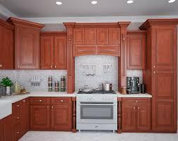 sample kitchen designs for small kitchens kitchen design