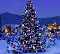 christmas tree lights christmas tree lights ireland christmas