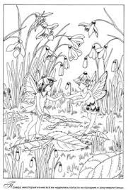 amazon magical jungle inky expedition coloring book