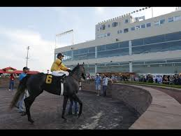 Prairie Meadows Buffet by Prairie Meadows U0027 Racing Going The Way Of The Dogs
