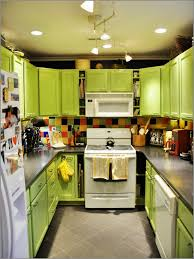 Affordable Kitchen Cabinets Kitchen Cabinet Panels Dress Up Cabinet Cabinet With Doors And