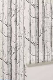 birch tree wallpaper qygjxz