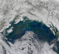 Alaska does sound travel in space images A spring bloom in the gulf of alaska image of the day jpg