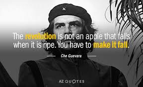 TOP 25 QUOTES BY CHE GUEVARA of 181