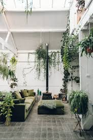 Home Interior Plants by Interior Plants Decoration
