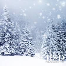 Photography Backdrop Winter Fir Trees Photography Backdrop Christmas Photo Background