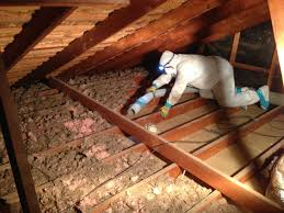 top 3 signs of damaged insulation in your attic green rat control