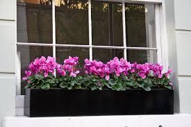 wonderful window flower boxes u2013 home decor by reisa