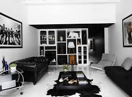 cool modern living room with attractive fur rug idea and homey