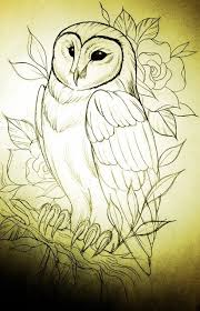 barn owl tattoo stencil in 2017 real photo pictures images and