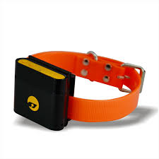 waterproof gps tracking device collar gps tracking cats with