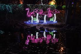 when do the zoo lights end parade of lights zoo lights christmas lights holiday displays in