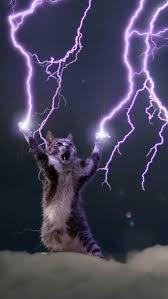 Unlimited Power Meme - unlimited power cat meme generator