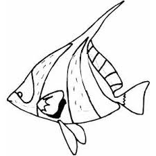 free printable ocean coloring pages coloring pages of fish in