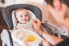 Best High Chair For Babies 8 Best High Chairs For Baby