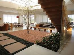 indoors garden lush garden sprouts from living room soil at brazilian house