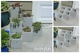making a cinder block step planter thriftyfun