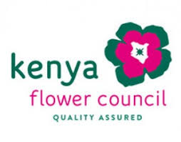 flower companies flower growers honored as kenya flower council unveils its new