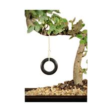 amazon com bonsai boy bonsai tree tire swing patio lawn u0026 garden