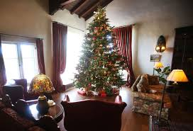 5 places to buy your real christmas tree in tucson tucson life