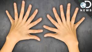 why do we 10 fingers and 10 toes