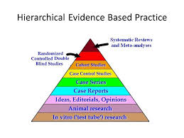Blind Physical Therapist Evidence Based Decision Making In Pediatric Physical Therapy Ppt
