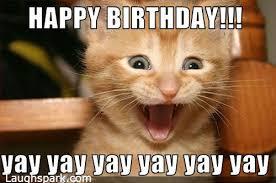 Funny Cat Birthday Meme - happy birthday images funny very funny pics