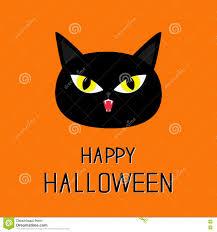 halloween cat backgrounds happy halloween boo a funny background for a happy halloween