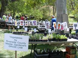 california native plants for sale botanic gardens plant sales
