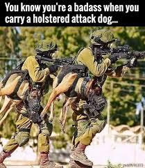 Team Black Guys Meme - see more here https www sunfrog com pets love german shepherd dog