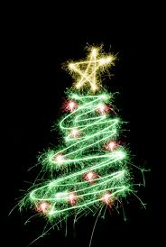 photo of sparking tree free images