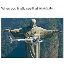Mosquito Memes - mosquito funny pinterest memes humor and funny pics