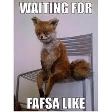 Stoned Meme - stoned fox meme tumblr