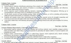 insurance underwriter resume underwriting credit analyst resume