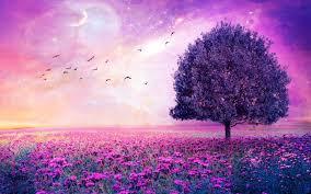purple flowers field art tree wallpaper