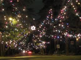 christmas lights in los angeles where to find holiday lights