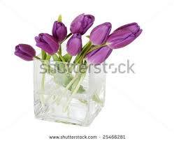 6 Inch Square Vase 40 Best Flower Arrangement Ideas Images On Pinterest Centerpiece