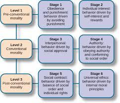 Lifespan Theories  Online Textbook Chapter   Alyvea com