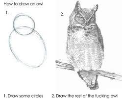 Art Owl Meme - video how to draw an owl for kids local santa cruz