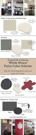 neutral and calming whole house paint color scheme tips for