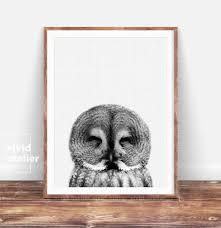 Woodland Animal Nursery Decor by Owl Print Nursery Wall Art Nursery Decor Woodlands Animal