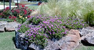 flowers okc okc metro area landscaping and environment custom services