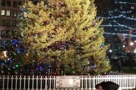 christmas tree lighting boston 2017 2017 boston common tree lighting magic 106 7