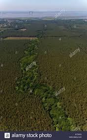 Vegetation cover stock photos vegetation cover stock images alamy
