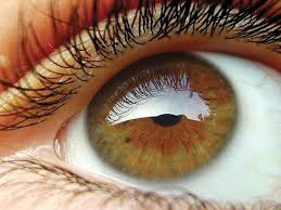 World Blindness Day World Sight Day Call To Address Avoidable Blindness The Express